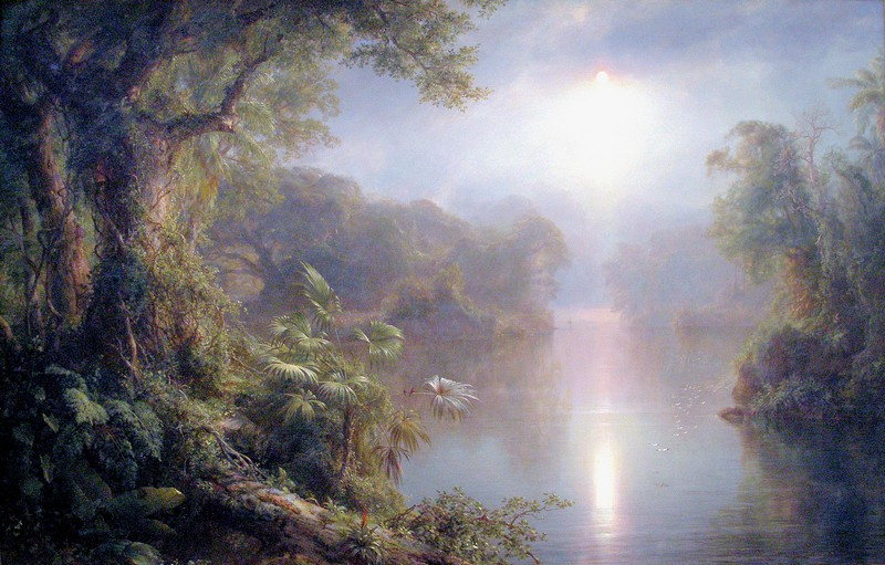 http://www.bjl-multimedia.fr/real_tv/Frederic-Edwin-Church_Morning-in-the-Tropics-1877-.jpg